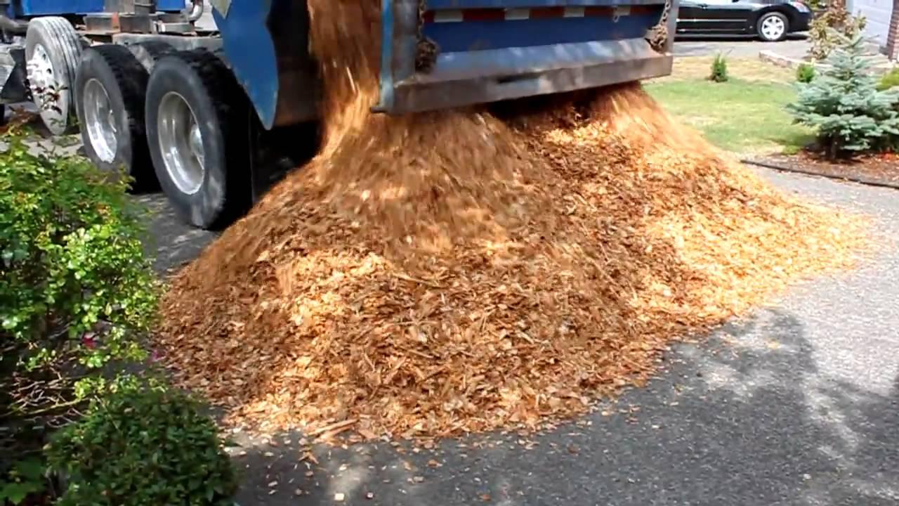 Cedar Chips 17 Cubic Yards Youtube