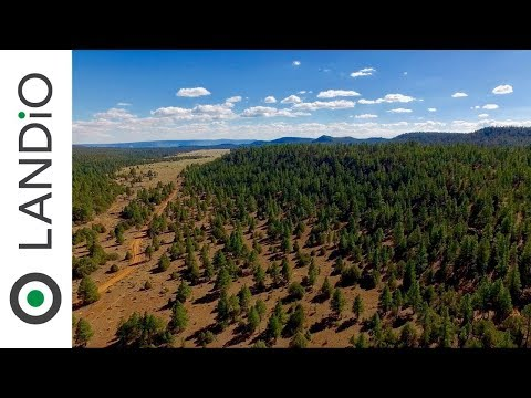 SOLD : 15 Acre Mountain Homesite with Power in Cibola National Forest
