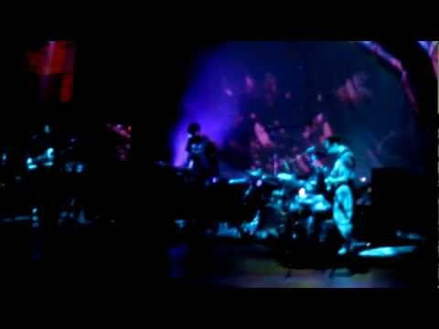 animal collective - lion in a coma / cobwebs - hollywood bowl
