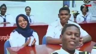الفنان الدكتور إبراهيم عبدالحليم - المنارات - أغنية مصورة