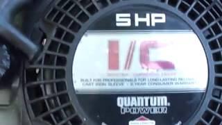Briggs and Stratton Quantum I/C industrial commercial grade engine rare