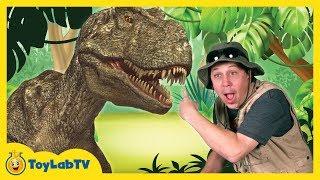 Т-Рекс гігантський розмір життя динозаврів і Парк Рейнджер Аарон з динозавром сюрприз іграшки відкриваємо