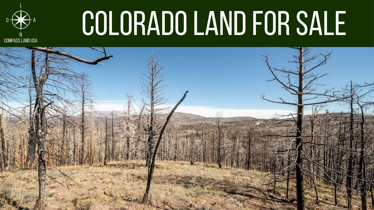 4.18 Acres Land for Sale in Forbes Park Costilla County Colorado