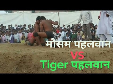 Mausam pehlwan vs tiger pehlwan kust