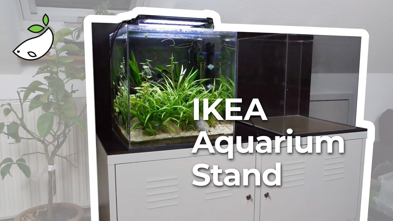 New Ikea Aquarium Stand And Tank Maintenance Youtube