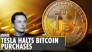 Tesla suspends vehicle purchases using bitcoin   business and economy latest english news