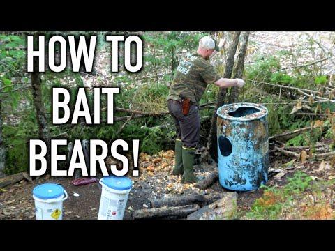 HOW TO BAIT BEARS! | Establishing New Bait Sites