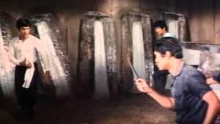 Bruce Lee Джит Кун-До, снялся в фильмах - Мечта о богатстве