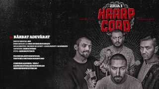 Repeat youtube video Haarp Cord - Barbat Adevarat (prod. SEZ)