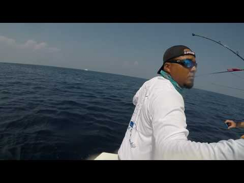2017 Offshore World Championship | Fiji Classic | Pacific Sailfish