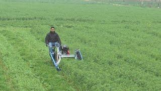एक मशीन👌हरा चारा,गेहूं,धान भी काटे ओर गोबर भी हटाये|fodder cutting machine|automatic scrapers dairy