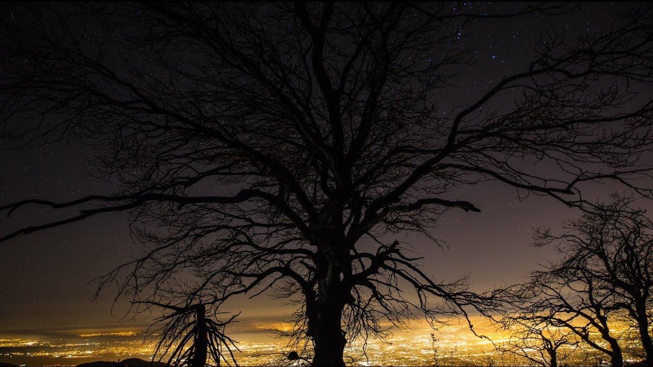 Moby – The Lonely Night Lyrics | Genius Lyrics