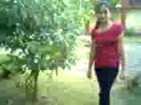 sumy mughalsarai.3gp