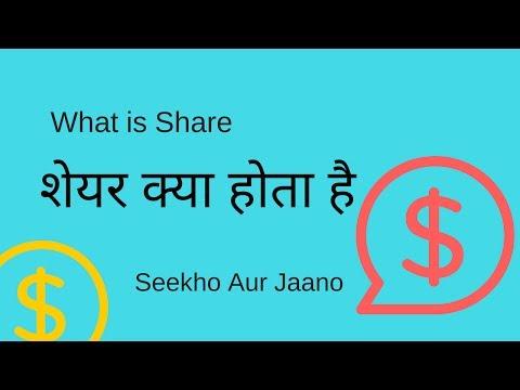 [Hindi] शेयर क्या होता है    What is Share or stock  [Hindi]