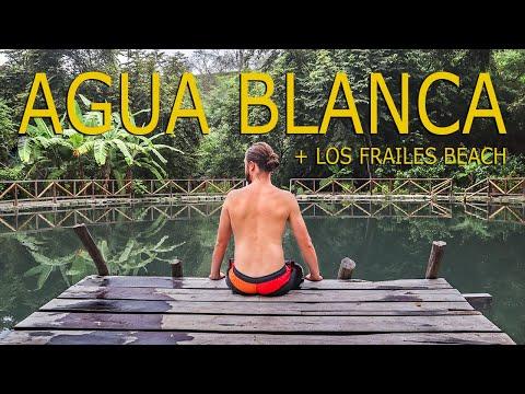 AGUA BLANCA +