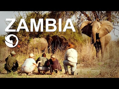 Zambia - Where to go and what to see