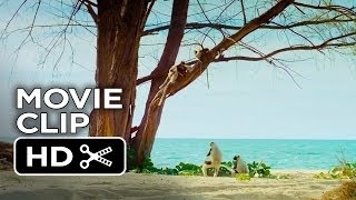 Island of Lemurs: Madagascar Movie CLIP - The Lemur Dance (2014) - Nature Documentary HD