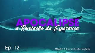 Apocalipse: A Revelação da Esperança #012 - Pb. Estevão Monti