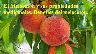 El Melocoton y sus propiedades medicinales Benefios del melocotón