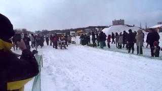 全国犬ぞり稚内大会 観客向けに犬ぞりが体験できるレース.