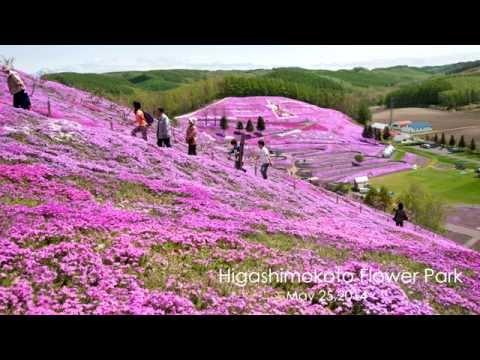 4KHokkaido 2014 highlights of Hokkaido landscapes  4K北海道2014~総集編