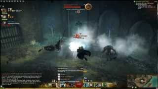 Guild Wars 2 - Puzzle in Flame Temple Tombs (Diessa-Plateau)