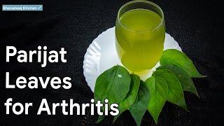 Parijat Leaves For Arthritis | Parijat Leaves Benefits | Health Benefits Of Harsingar