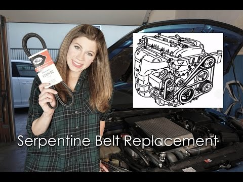 HOW TO REPLACE A SERPENTINE BELT!