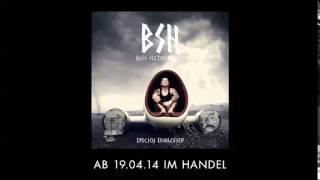 B.S.H. (Bass Sultan Hengzt) - DAS LEBEN IST SCHÖN