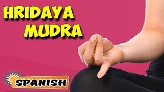 Hridaya Mudra   Yoga para principiantes   Yoga Mudra for Heart Ailments   About Yoga in Spanish