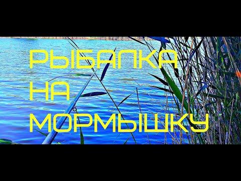 Рыбалка на поплавок с Мормышкой
