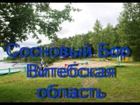 """Оздоровительный комплекс  """"Сосновый бор""""  Витебская область  Беларусь"""