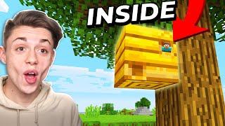 Building a Minecraft House inside a BEES NEST! | 1.15