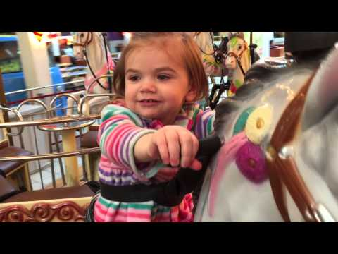 Carousel at Grapevine Mills #1