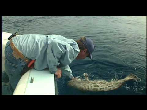 Anatomy of Fisheries Management - YouTube