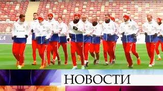 Матч сборных России и Бразилии смогут посмотреть в прямом эфире зрители Первого канала.