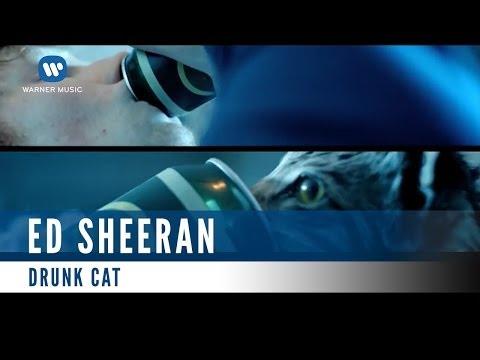 Ed Sheeran - Drunk Cat (Official Music Video)