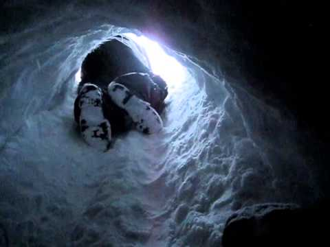 Two Old Men Find A Bear Cave