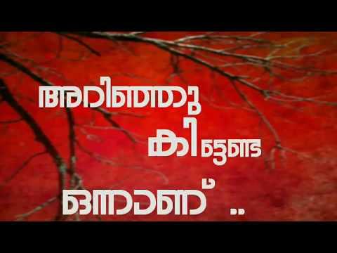 തിരിച്ചു കിട്ടാത്ത സ്നേഹം | Malayalam Lyrical WhatsApp Status Video