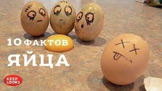 Яйца. 10 фактов
