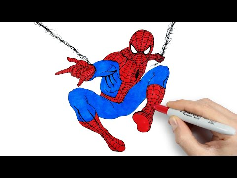 Spiderman Drawing And Coloring Orumcek Adam Cizimi Ve Boyama