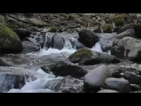 Relaxation music and falls water musics