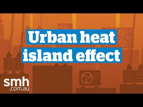The urban heat island effect