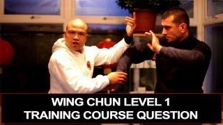 Wing Chun level 1 Course - energy drills, module 2