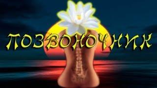 Йога для лечения позвоночника