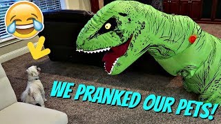 WE PRANKED OUR PETS || PRANK WARS || Taylor and Vanessa