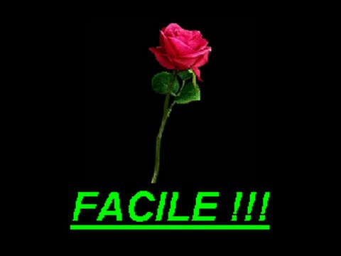 Une rose en papier facile mais comment faire youtube - Comment faire une rose en papier facile ...