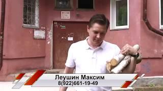 Обзор квартиры с камином на Орловской 34 в Кирове.
