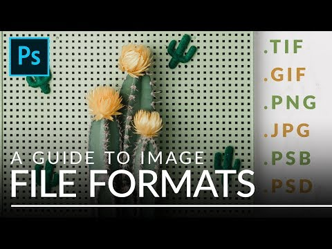 File Formats in Photoshop EXPLAINED (TIFF, GIF, PSB, & More)