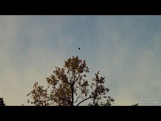 Стрельба по тарелочкам,подствольная камера,50 разных полётов, стенд